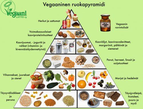 Painonhallintaa ja urheilua vegaanina – Luennolta poimittua